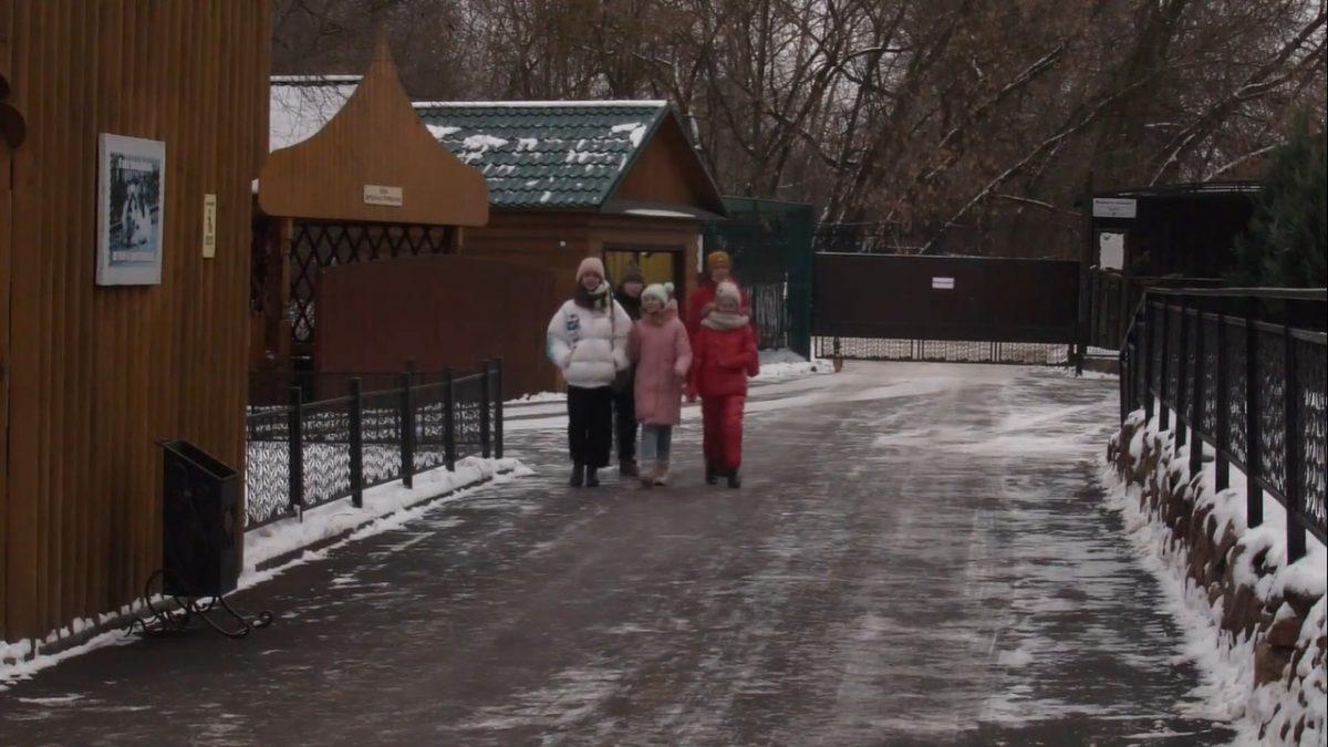 Дети рассказали о нижегородском зоопарке «Лимпопо»