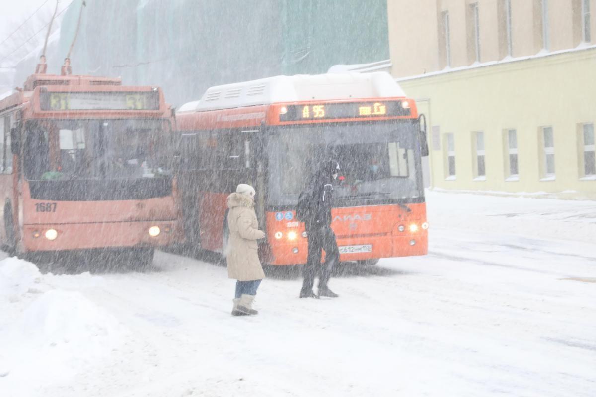 Госдума приняла во втором чтении законопроект о запрете высаживать детей-безбилетников из общественного транспорта