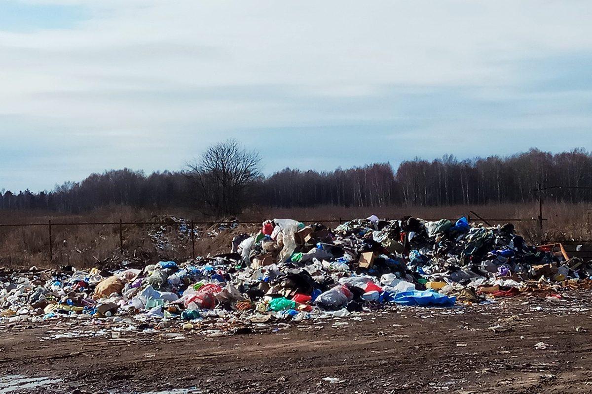 Активисты ОНФ помогли ликвидировать несанкционированные свалки в Нижегородской области