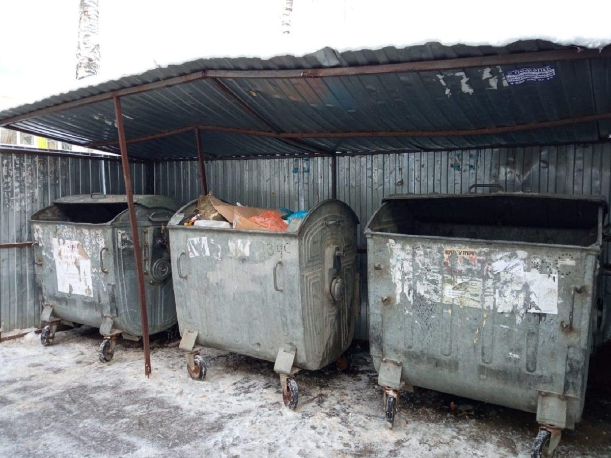 Минэкологии Нижегородской области проверило состояние контейнерной площадки вСоветском районе