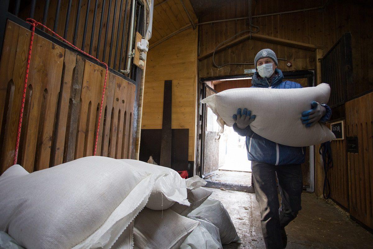 Волонтёры передали хвойную щепу и корм в нижегородский Центр реабилитации лошадей