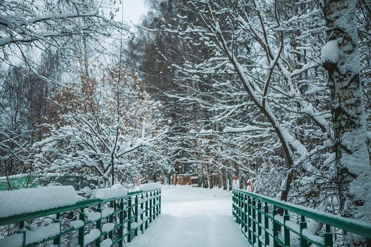 Благоустройство парка «Швейцария» выполнено на 35%