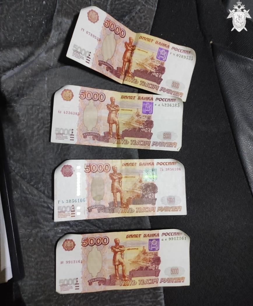 Водитель из Арзамаса пытался откупиться от полиции за 20 тысяч рублей