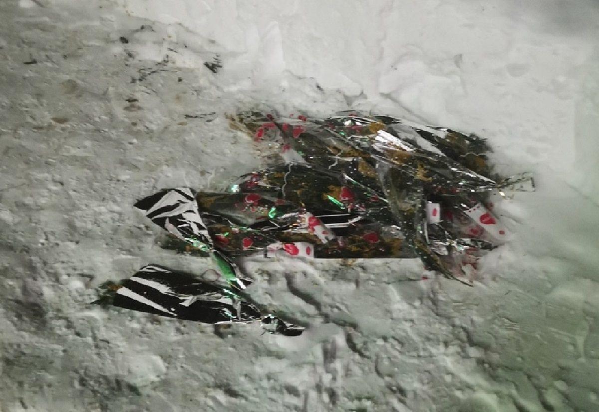 Свалка из цветов появилась в Нижнем Новгороде после 8 Марта