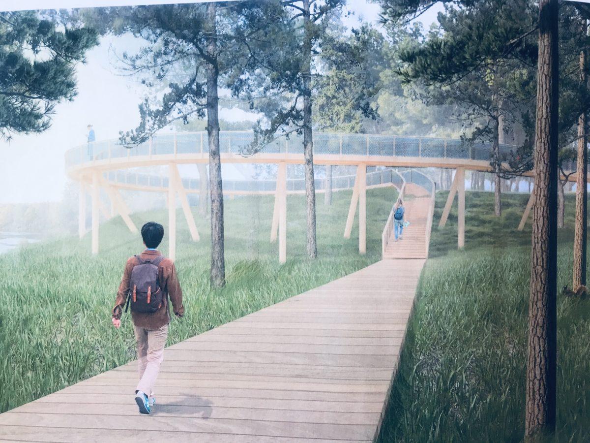 Смотровую площадку на Моховых горах построят к октябрю 2021 года