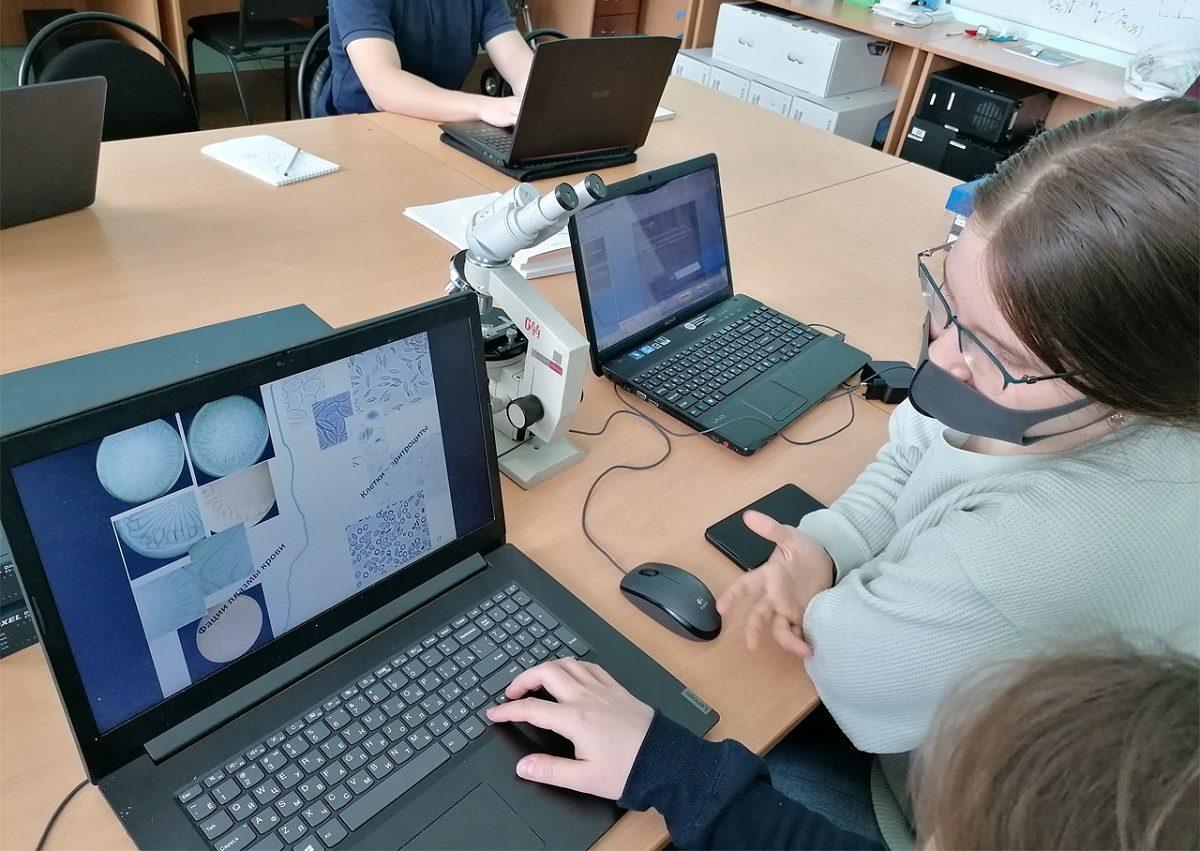 Учёные НГТУ и ПИМУ разработали систему визуального анализа микроскопии крови