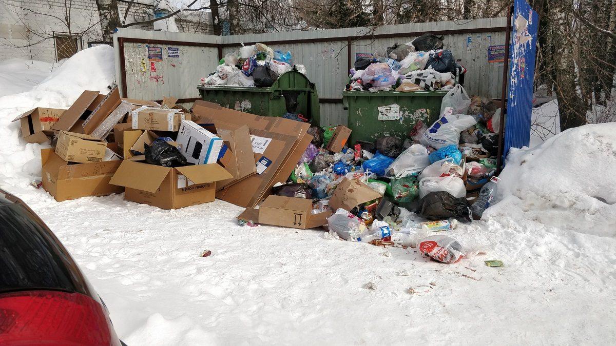 Давайте начистоту: кто должен отвечать за не вовремя вывезенный мусор