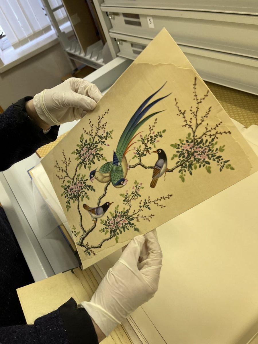 Нижегородцам показали «жемчужины» коллекций фонда графики в Нижегородском художественном музее