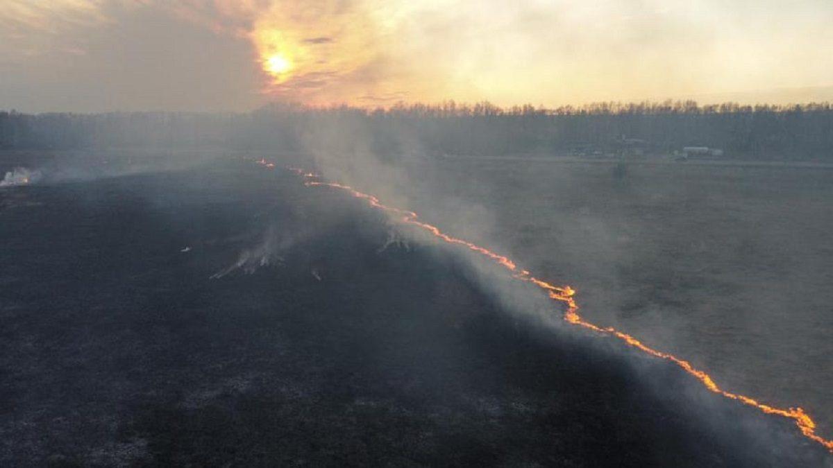 Кладбище едва не сгорело в Богородске