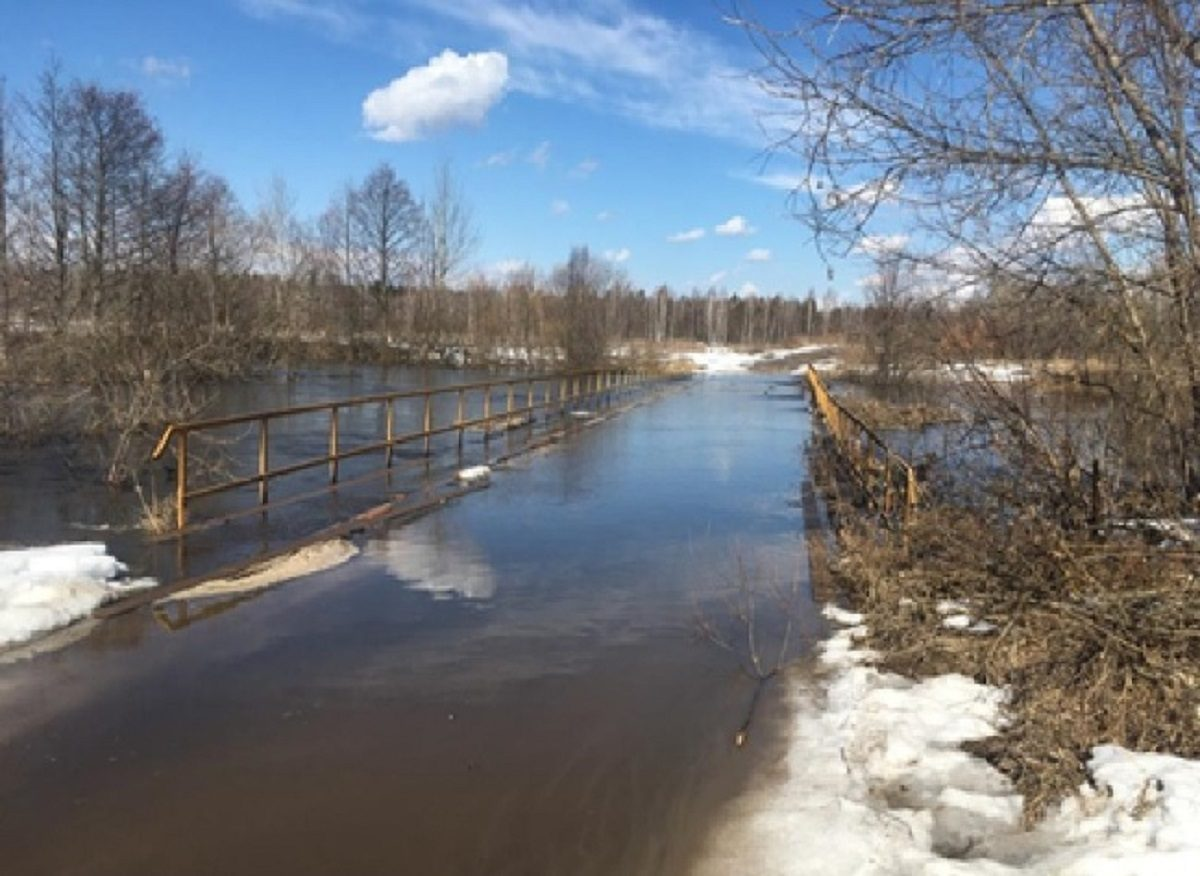 Девять мостов  подтопило во время паводка в Нижегородской области