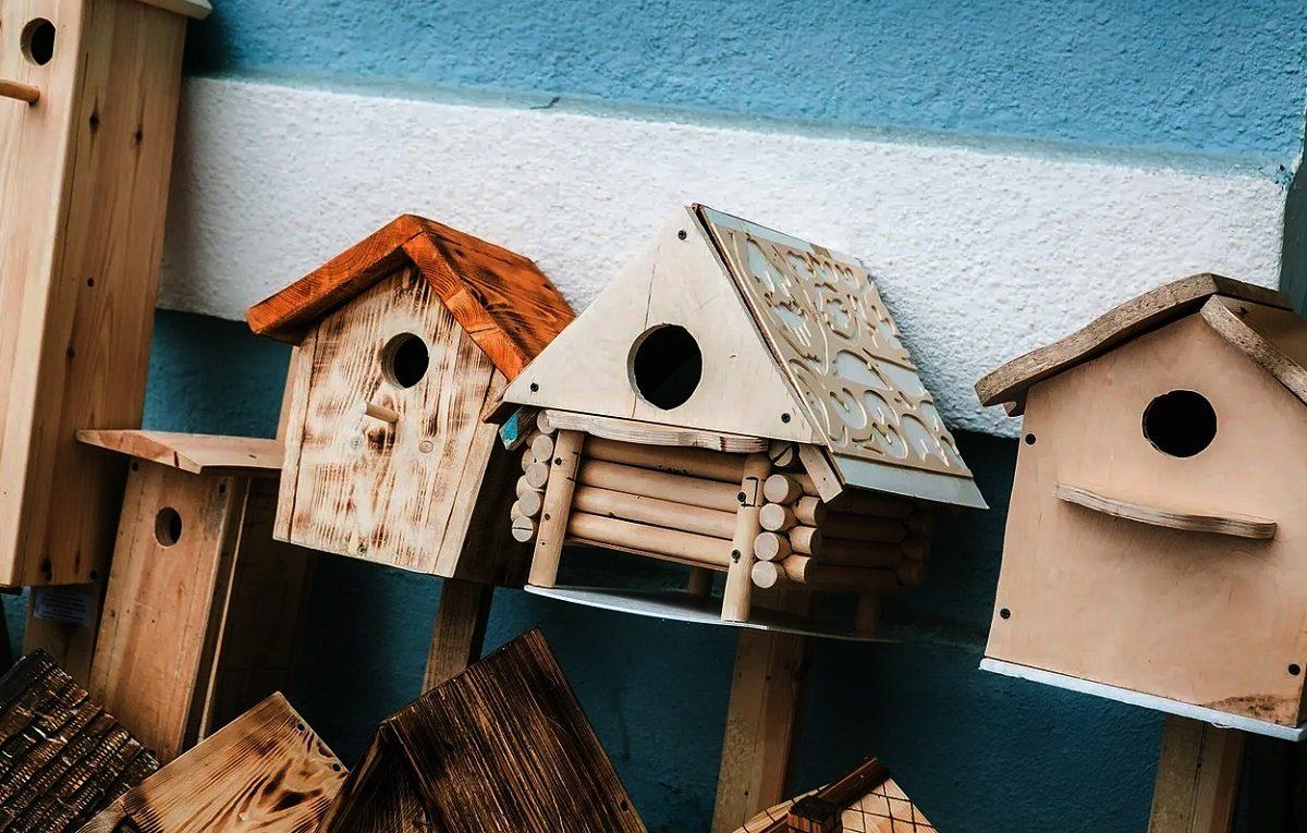 «Апартаменты» для птиц установят в парке «Швейцария»