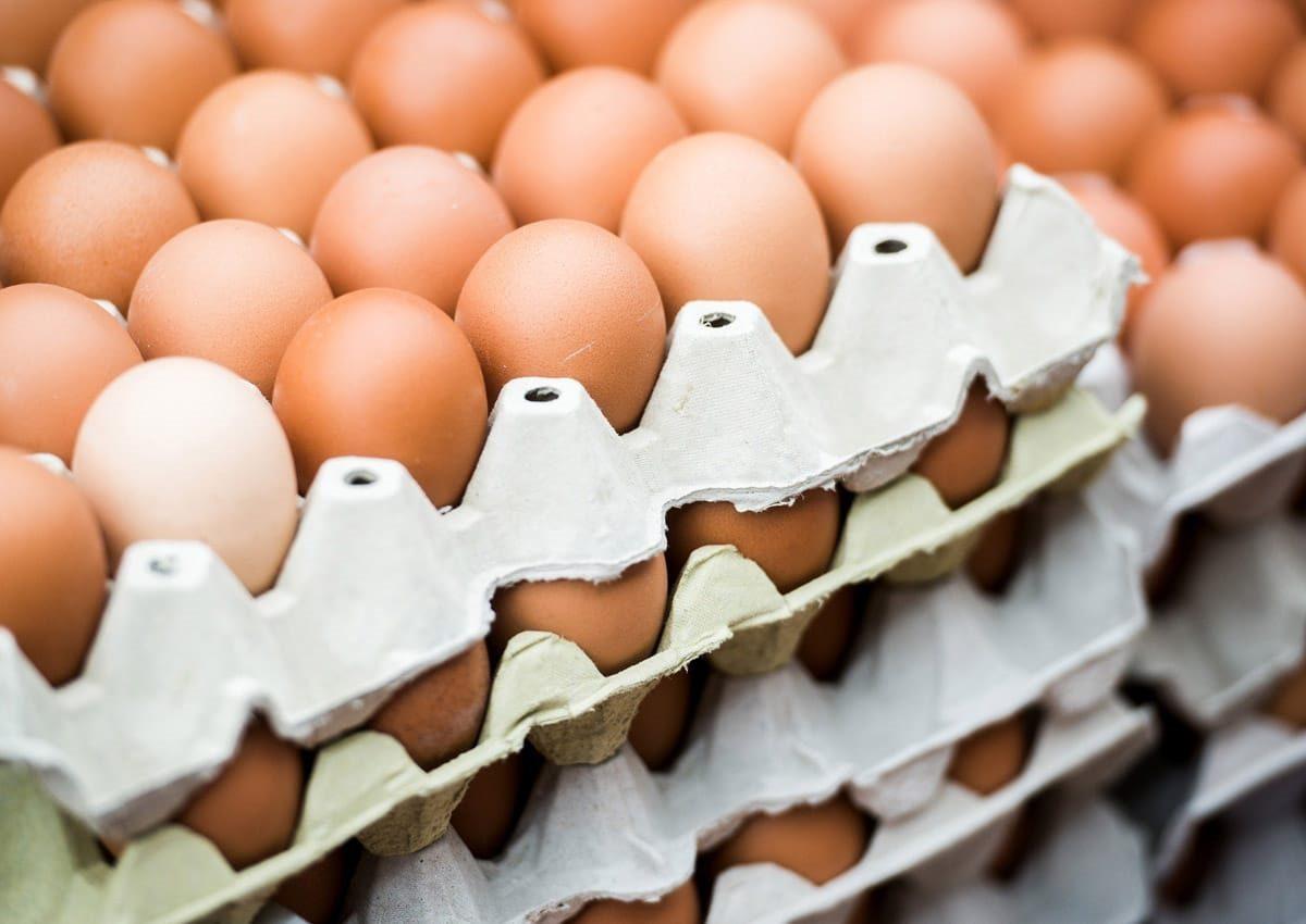 Распродажа яиц без наценки пройдет на ярмарках выходного дня в Нижнем Новгороде