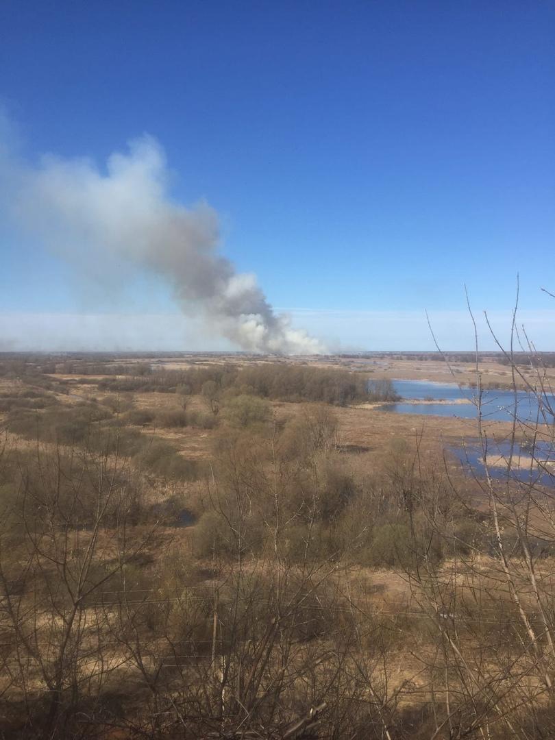 Пожар на Артемовских лугах ликвидировали