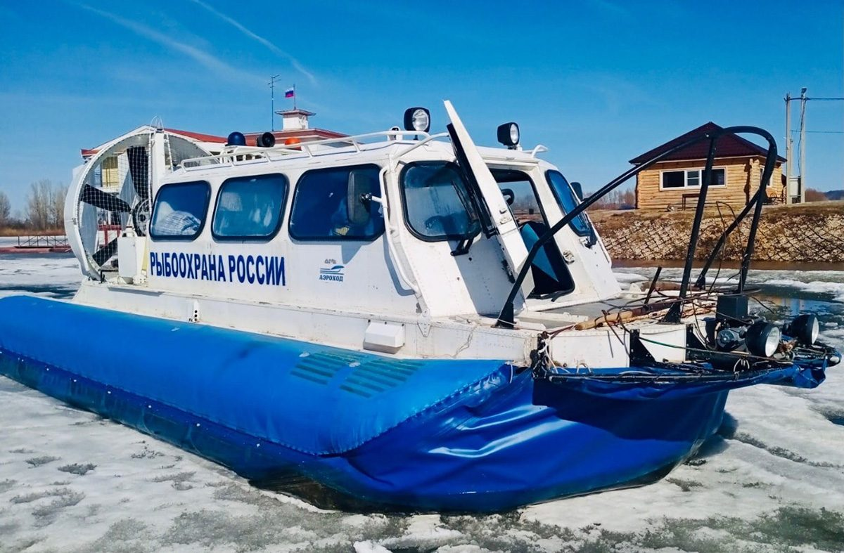 С15апреля наГорьковском водохранилище начинается нерест рыбы