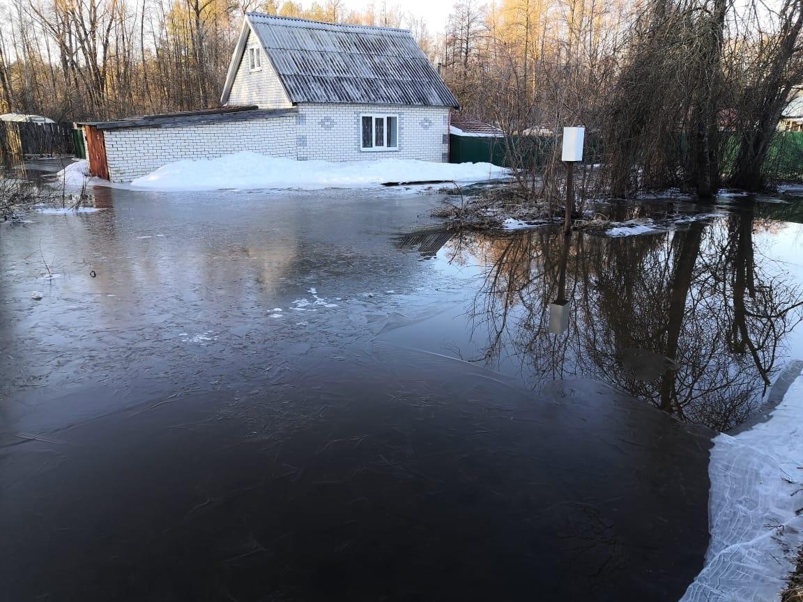 Больше 260 садовых участков затопило Сарове