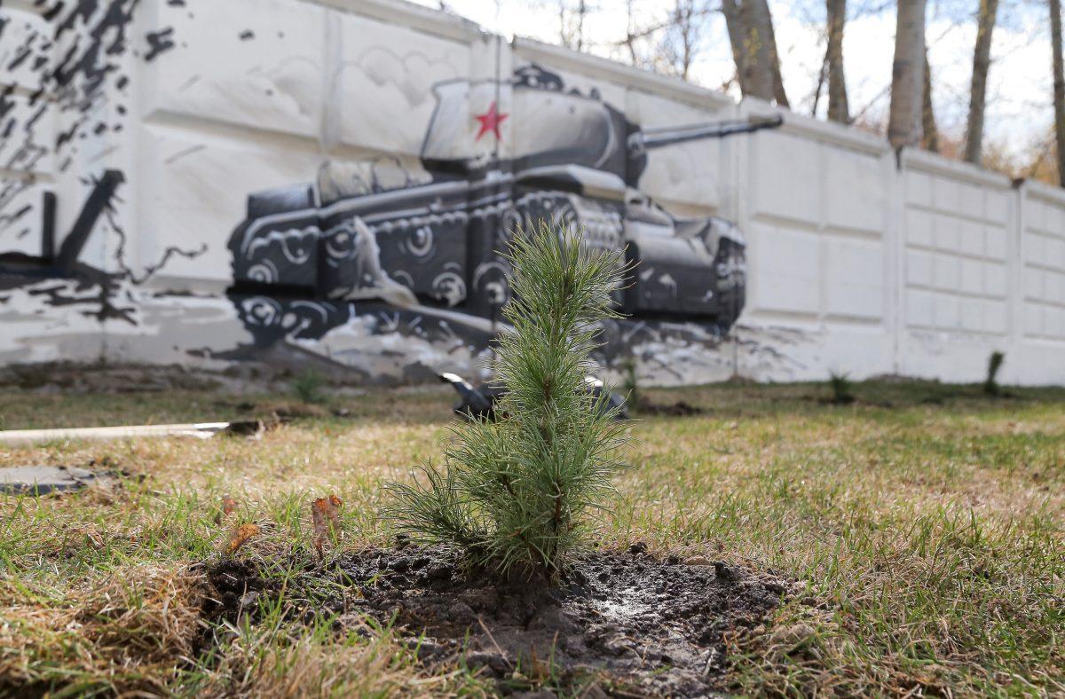 80 кедров посадили вПарке Победы врамках акции «Сад Победы»