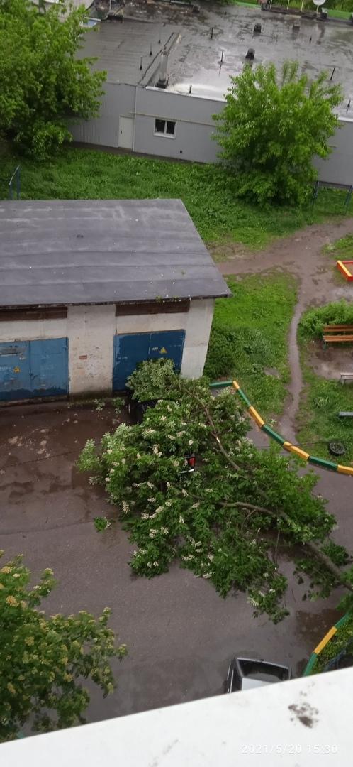 Рухнувшие деревья и слетевшая крыша: смотрим последствия урагана в Нижнем Новгороде