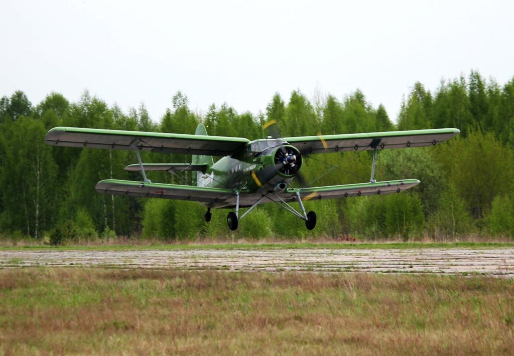 Авиапатрулирование лесов началось вНижегородской области
