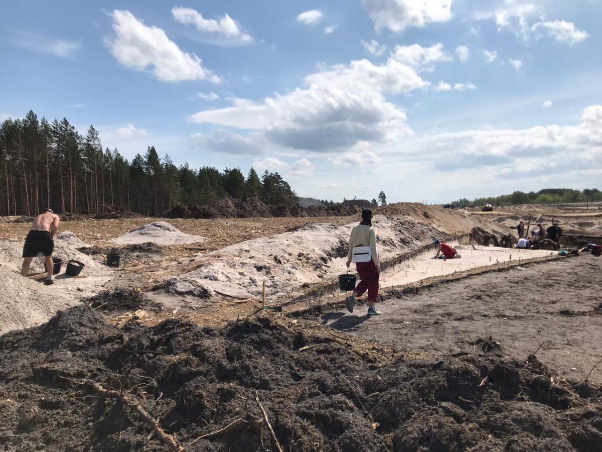 Археологические раскопки стартовали на М-12