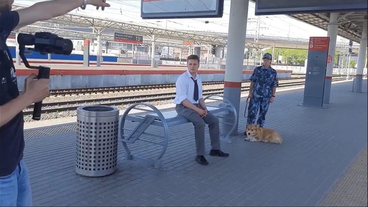 Корги-полицейский показал, как прошел его съемочный день на железнодорожном вокзале Нижнего Новгорода