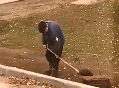 Мужчину из Выксы оштрафовали за незаконную добычу плодородной земли