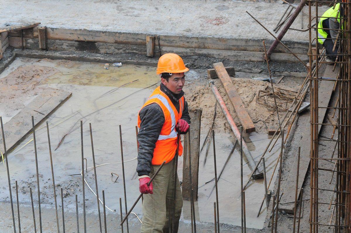 СК организовал доследственную проверку по факту строительства домов на месте скотомогильника в Воскресенском районе