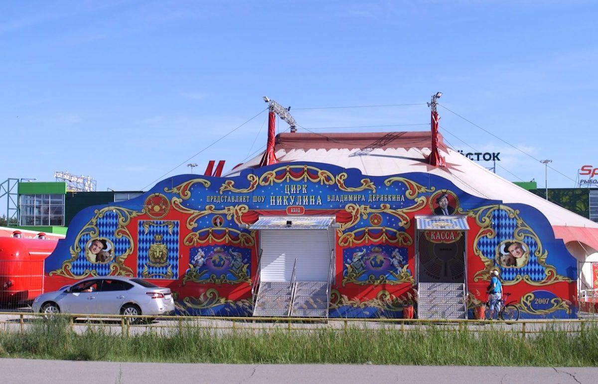 Жителей Дзержинска посвятили в «Секреты циркового искусства»