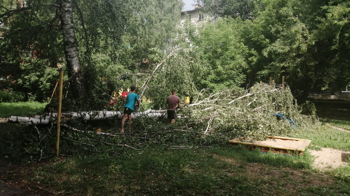 Более 200 деревьев повалило шквалистым ветром в Нижнем Новгороде