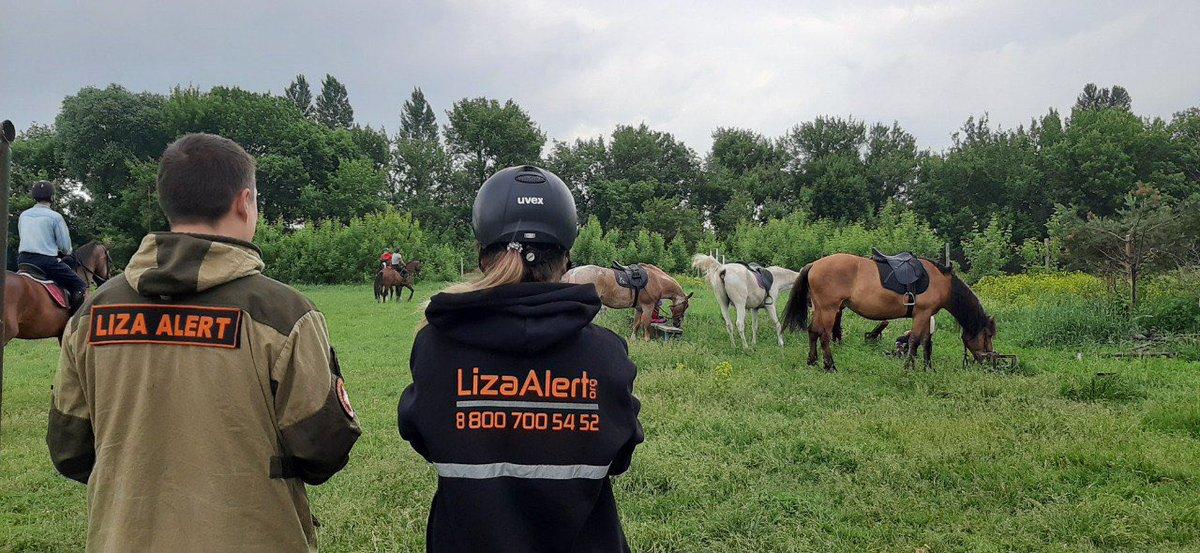 Конные отряды для поисков пропавших людей планируют привлекать в Нижегородской области