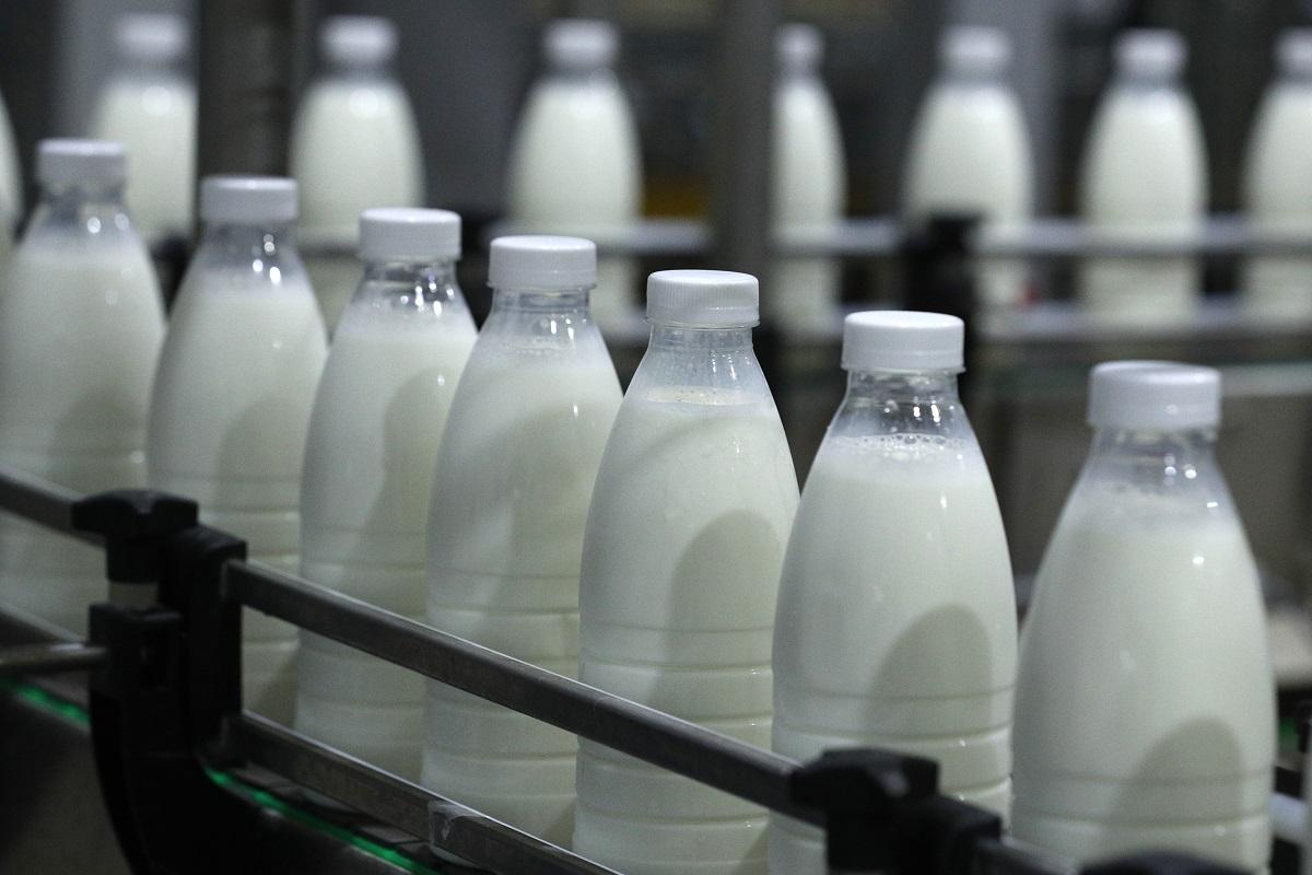 Предприятия нижегородского пищепрома увеличили производство продуктов питания