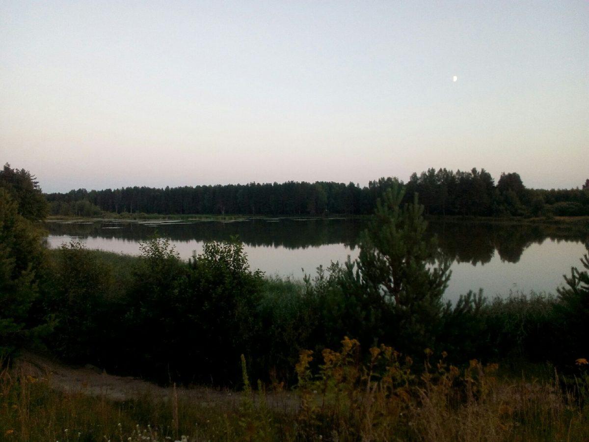 Молодая пара утонула в озере в Ветлуге