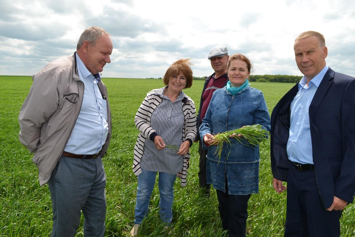 Приоритет – зерновым: посевные площади в Сеченовском районе увеличились на 1802 га