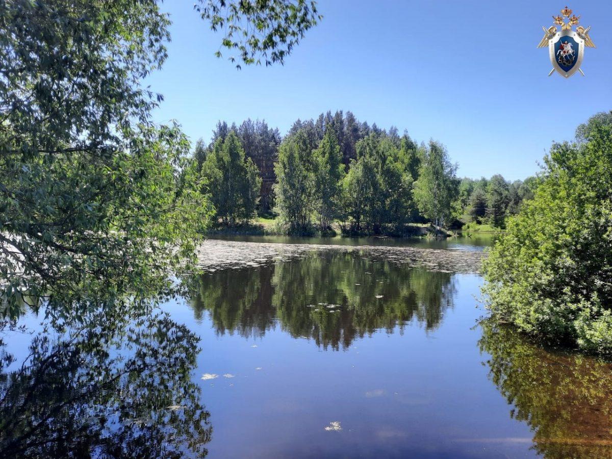Девятилетний мальчик утонул в водоеме Сергачского района