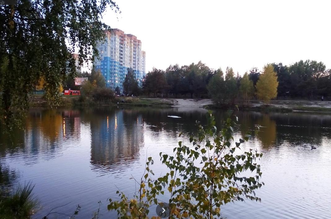 Роспотребнадзор проверит озеро Земснаряда на наличие церкарий