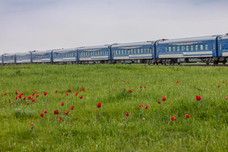 Пассажирские перевозки на Горьковской магистрали выросли в 2 раза в мае