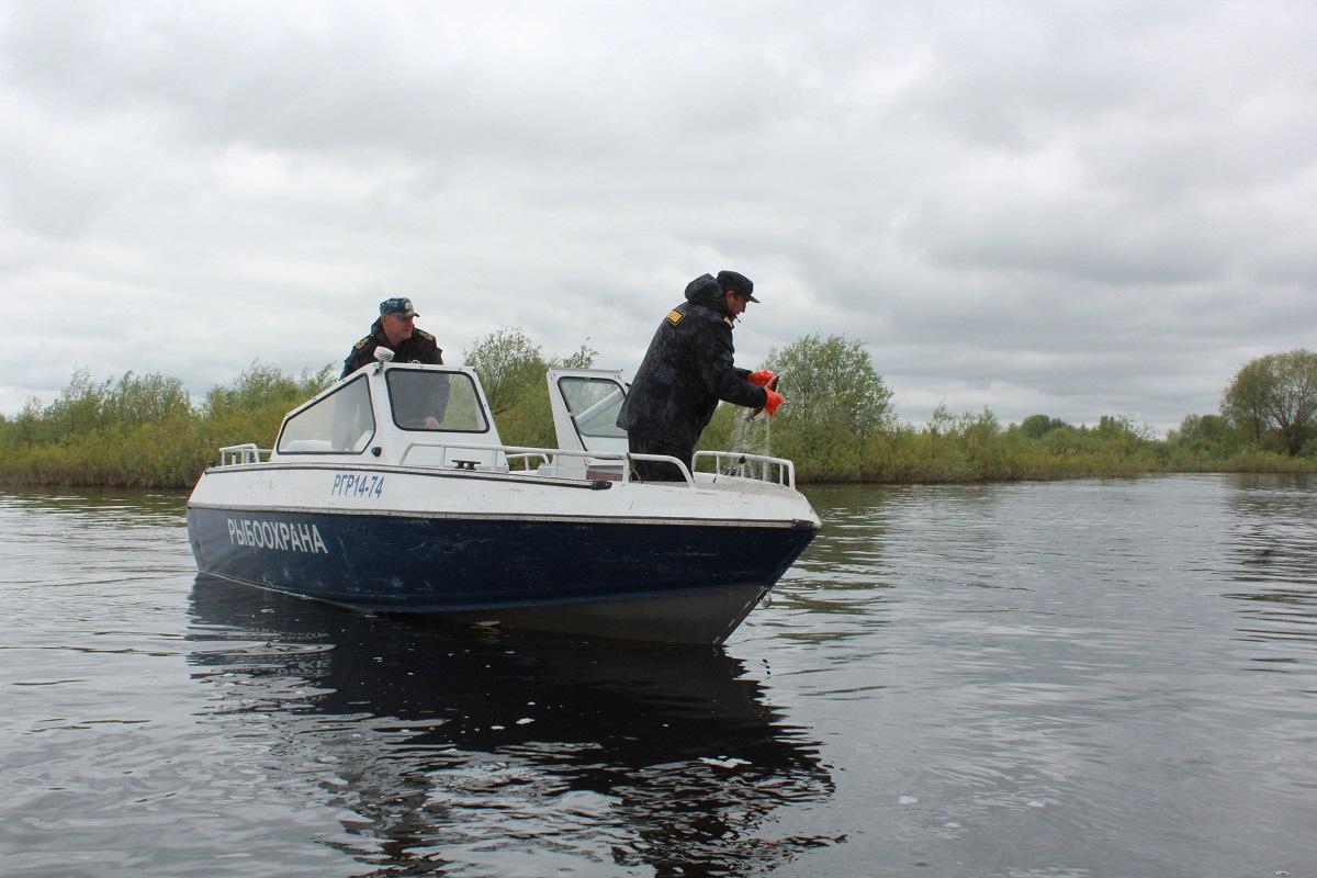 Полицейские задержали 60-летнего мужчину за незаконную ловлю рыбы в Рязанской области