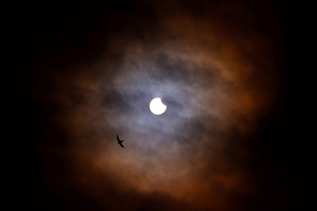 Нижегородские ученые увидели солнечное затмение
