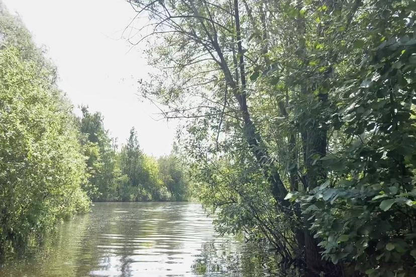 Мужчина утонул в акватории Оки в Павловском районе