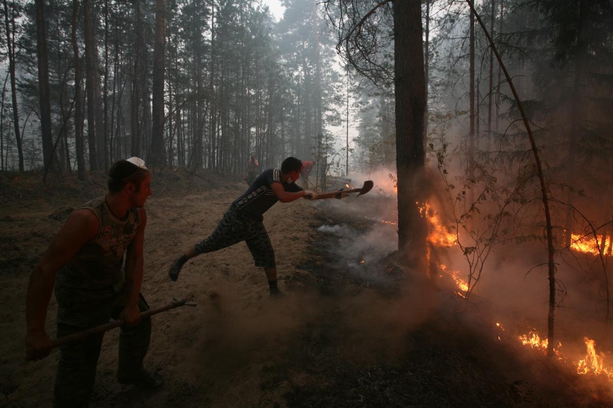 Около 400 граждан иорганизаций привлекли кответственности занарушение пожарной безопасности врегионе сначала года