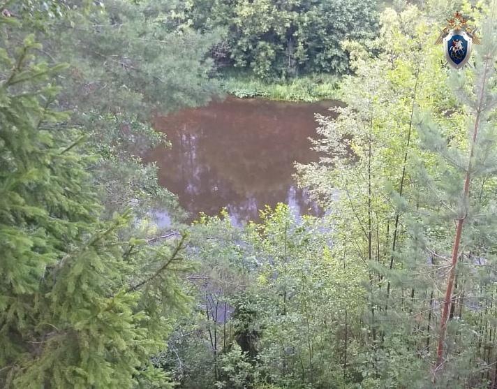 Стали известны подробности гибели подростка на реке в Городецком районе