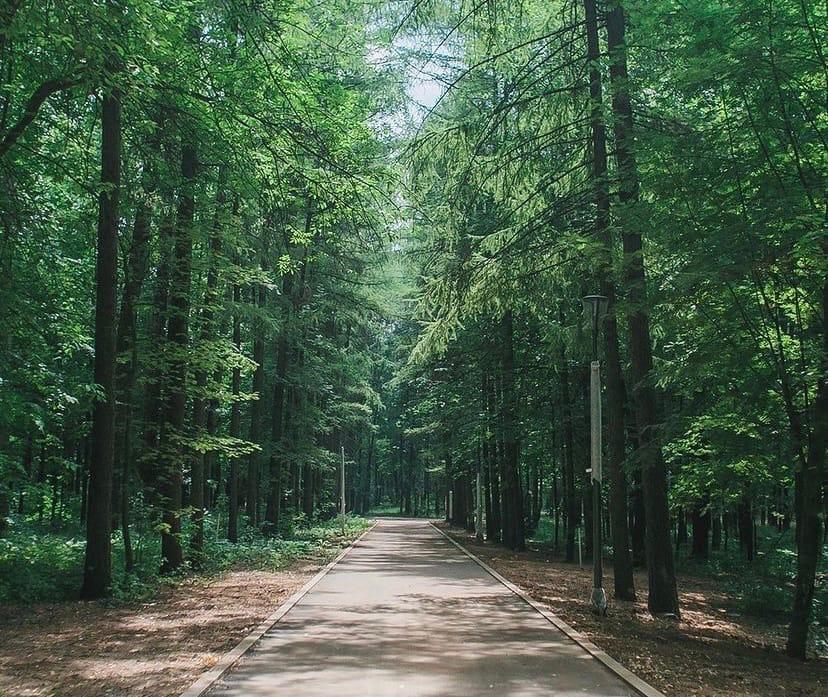 Юные нижегородцы и их родители рассказали, чего ожидают от обновленного парка «Швейцария»