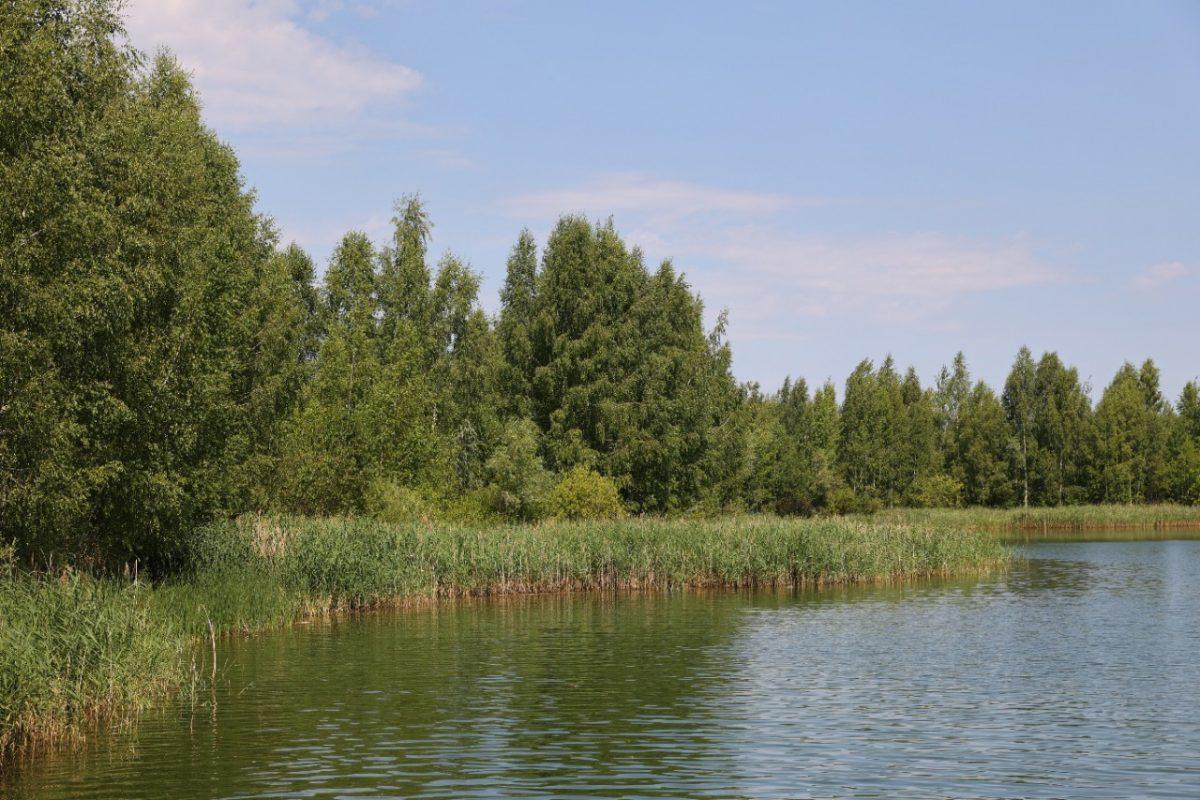 Под Дзержинском появится новая зона отдыха