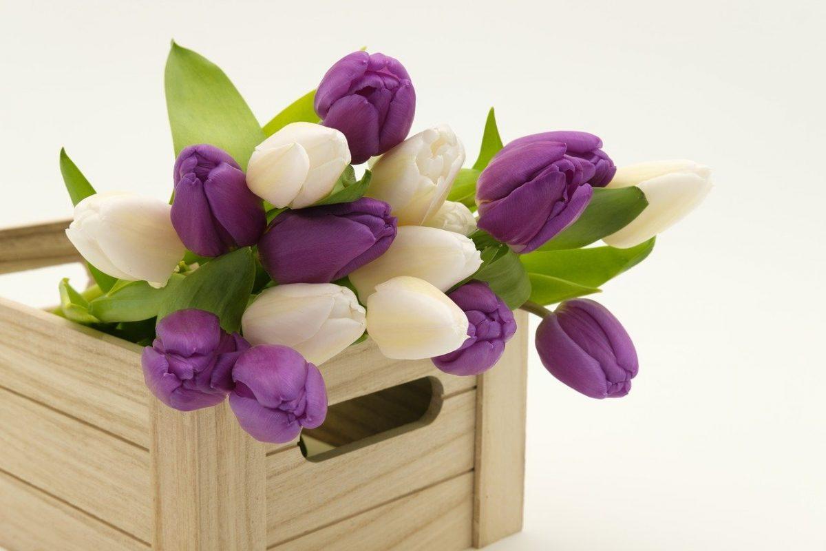 Купить цветы в Москве