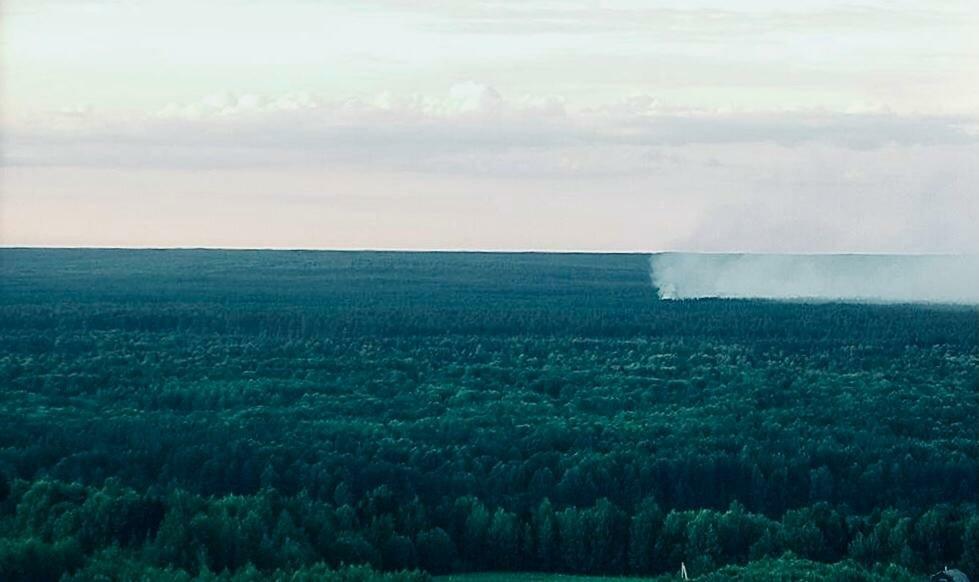 Два лесных пожара ликвидировали вНижегородской области запрошедшие сутки