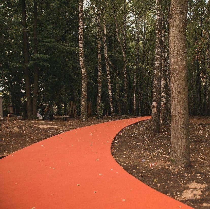Благотворительный пробег в пользу детей с синдромом Дауна пройдет на новых дорожках в парке «Швейцария»