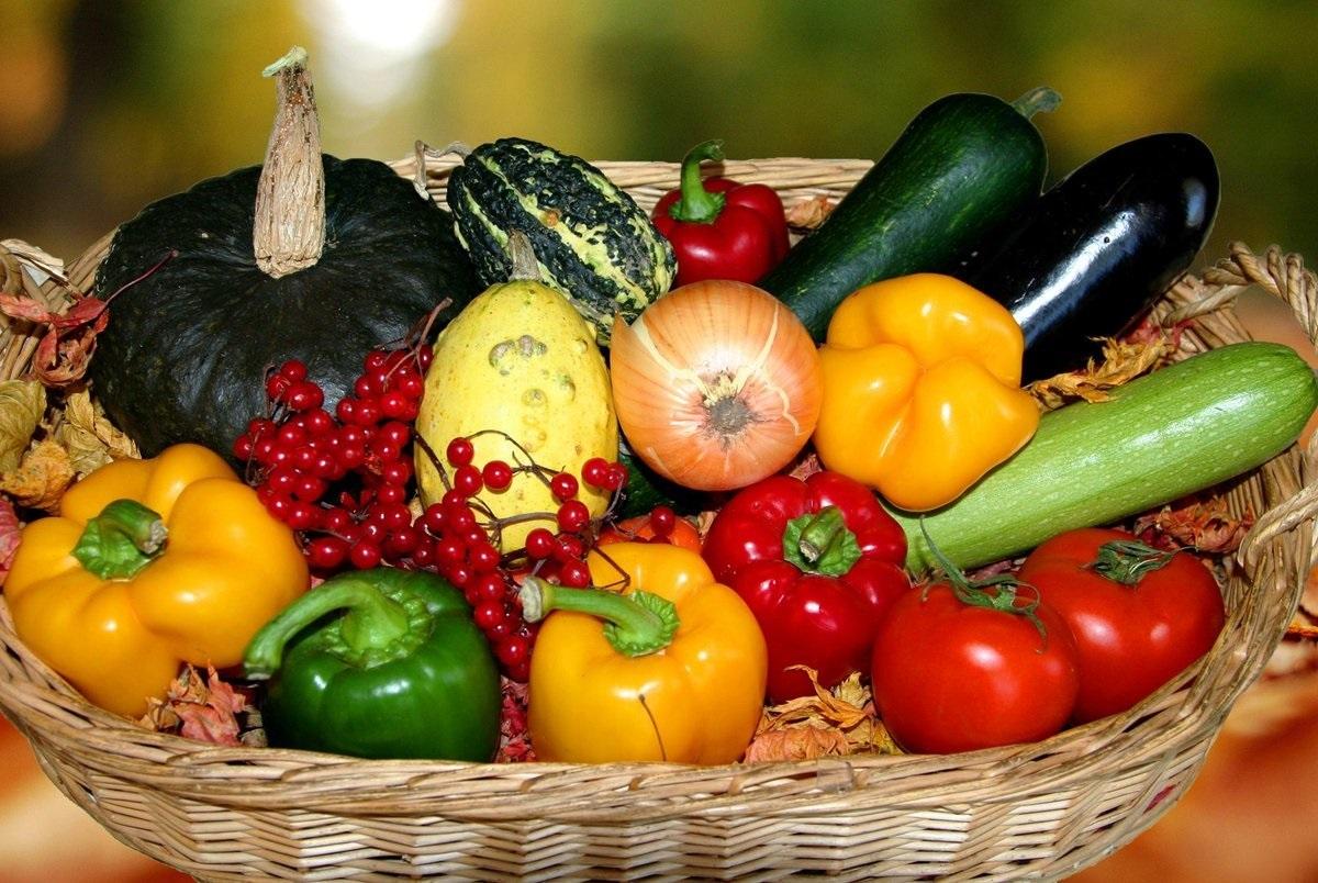 Летнее меню: готовим блюда из сезонных овощей