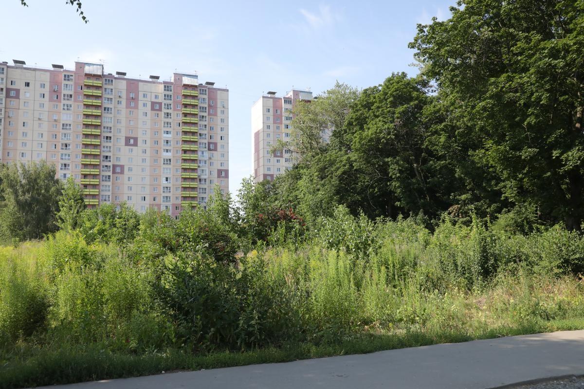 Сигналы «Маяка»: в жилом комплексе разгорается конфликт вокруг сквера
