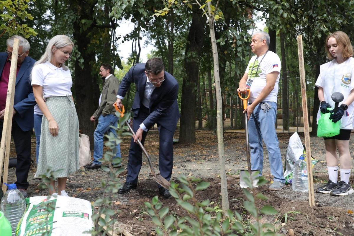 Парк «Швейцария» стал одной изплощадок Всероссийской акции «Сохраним лес»
