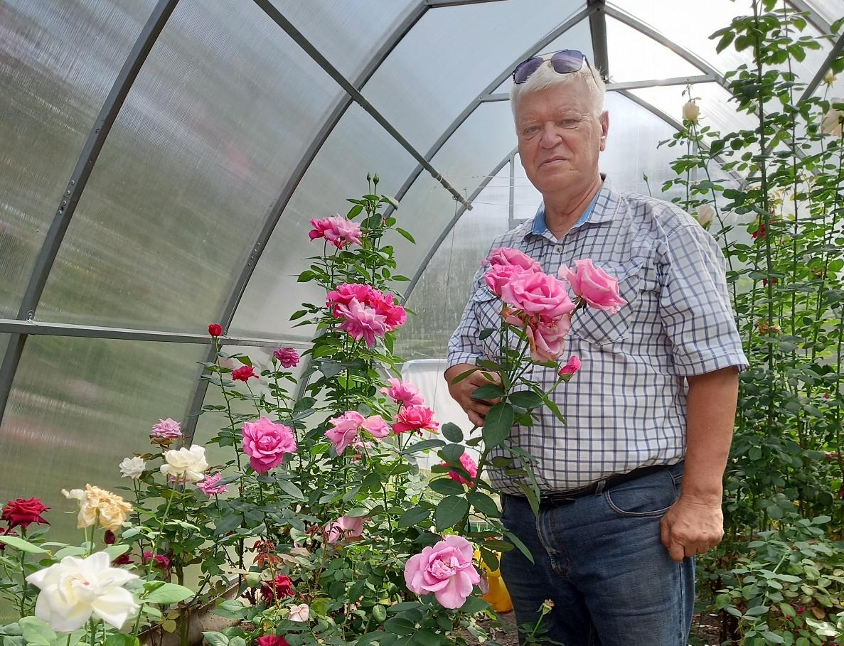 Августовские цветы Павла Пахтусова