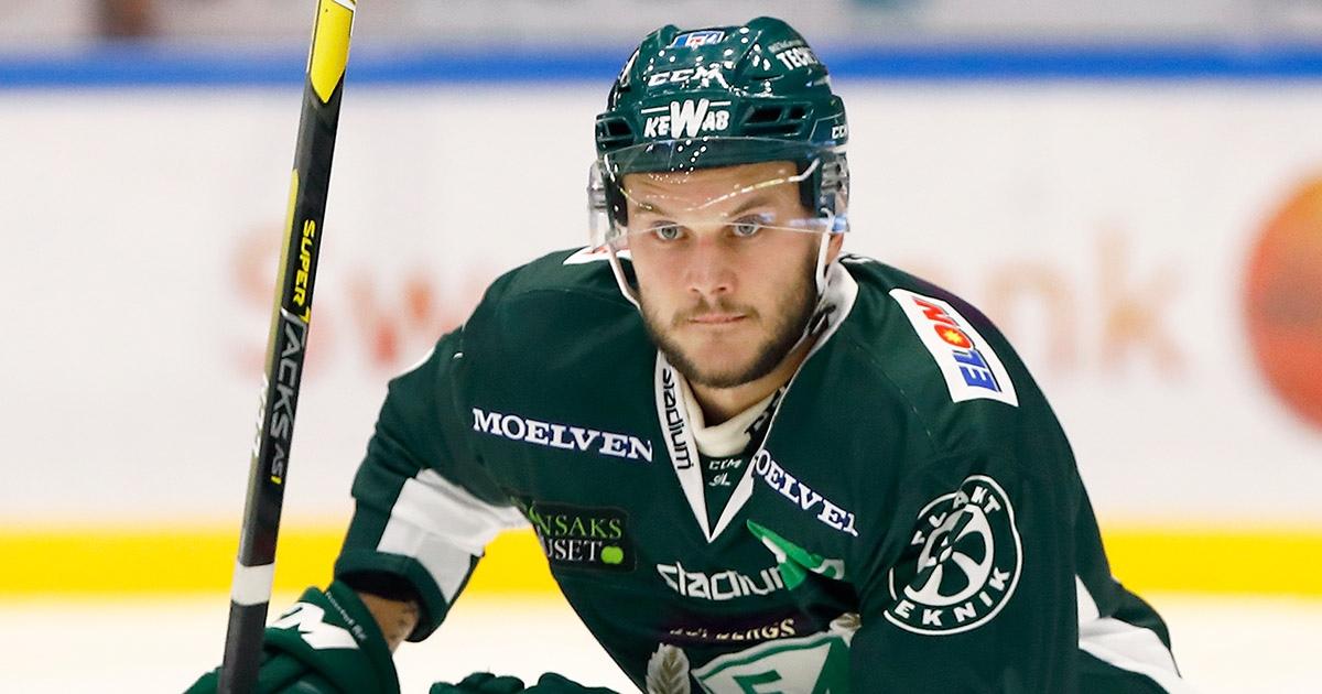 Нижегородское «Торпедо» пополнил хоккеист из Швеции